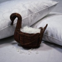 Подушки Пух Натурес (5)